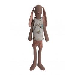 Medium Brown Bunny boy 2013...