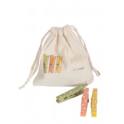 Spring Pegs in a Bag 2012 -...