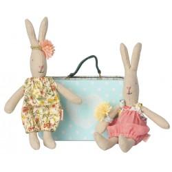 2013 Micro rabbit w. 2 sets...