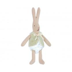 Micro coniglietto con...