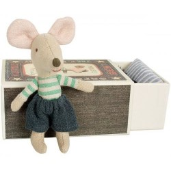 Mouse Little Brother in box...