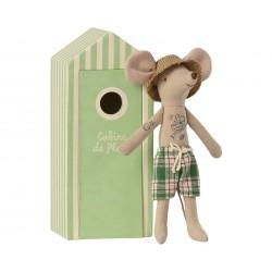 Beach Mice Dad in Cabin de...